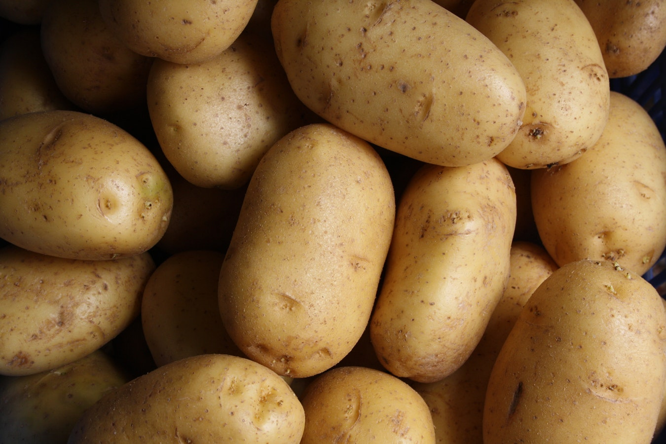 A close up of potatoes. Potatoes are a great source of Vitamin B for seniors