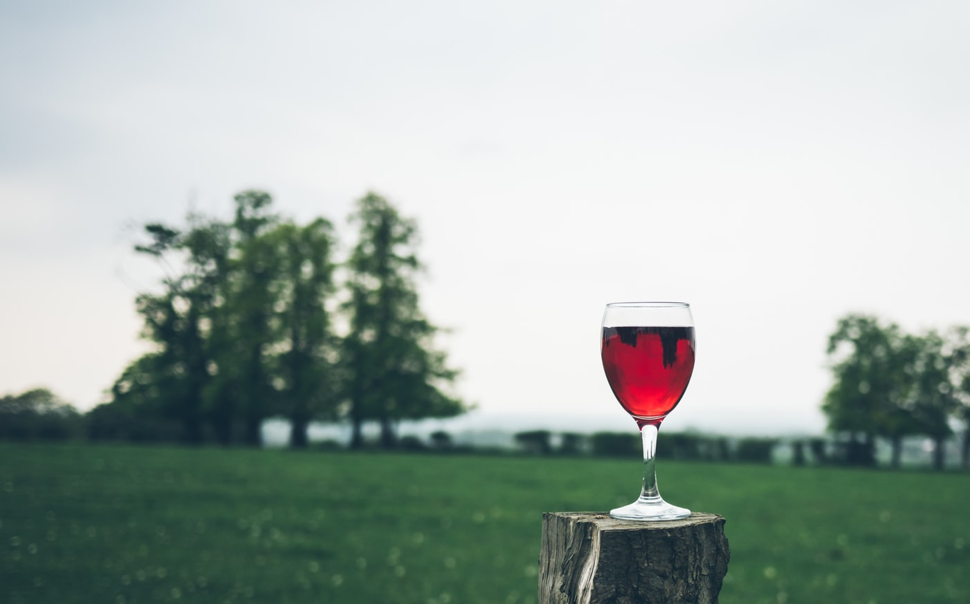 A glass of wine in a grass field. Many older adults are beginning to suffer from substance abuse
