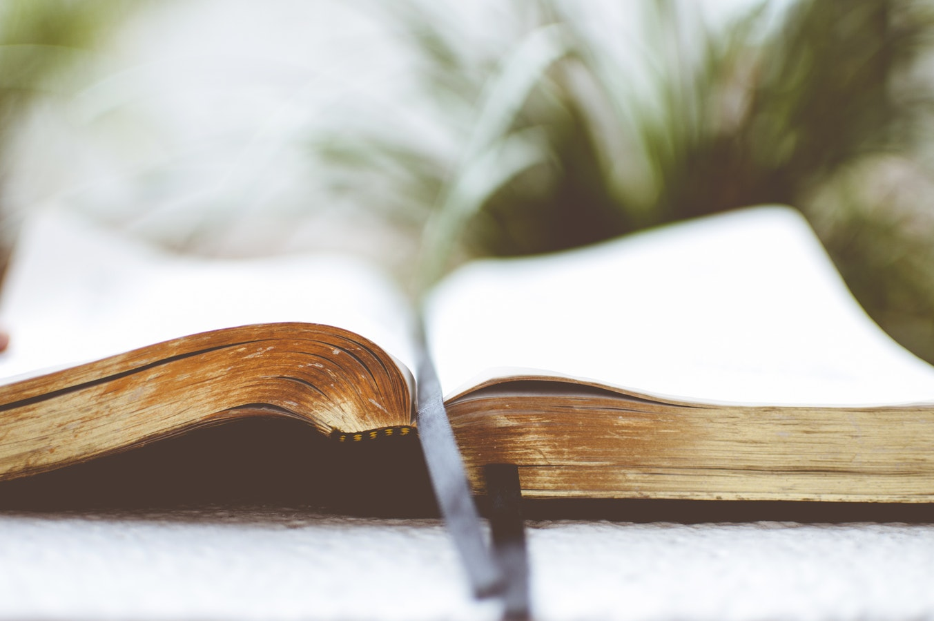 An open bible with a bookmark in it. Seniors sometimes turn to church for social engagement as they can teach classes or become involved in group classes.
