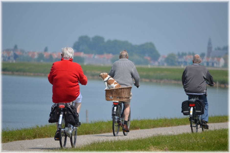 Three older gentleman and a dog out on a bike ride. They know that exercise is important for healthy aging.
