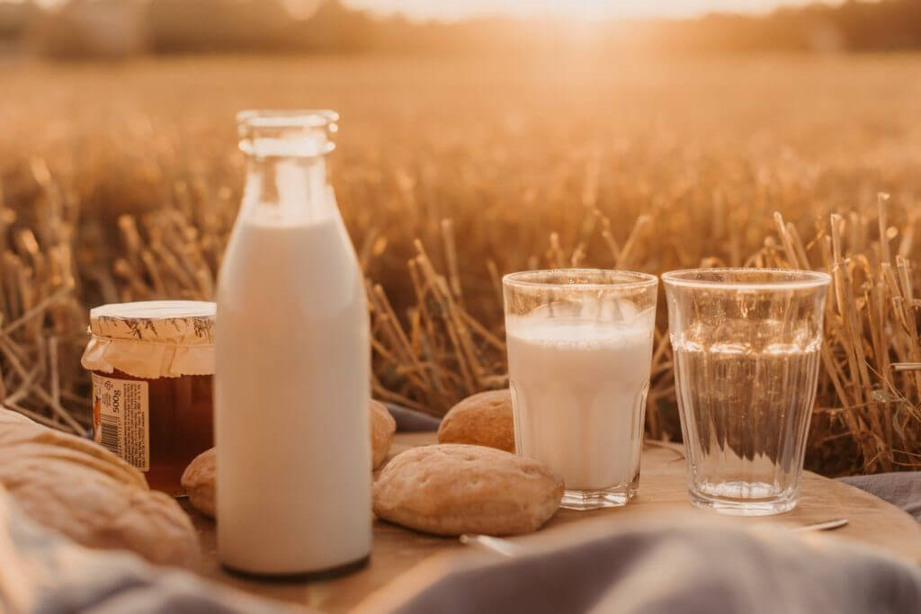 A glass of milk next to bread in a field. The benefits of vitamins in milk are very good for seniors.