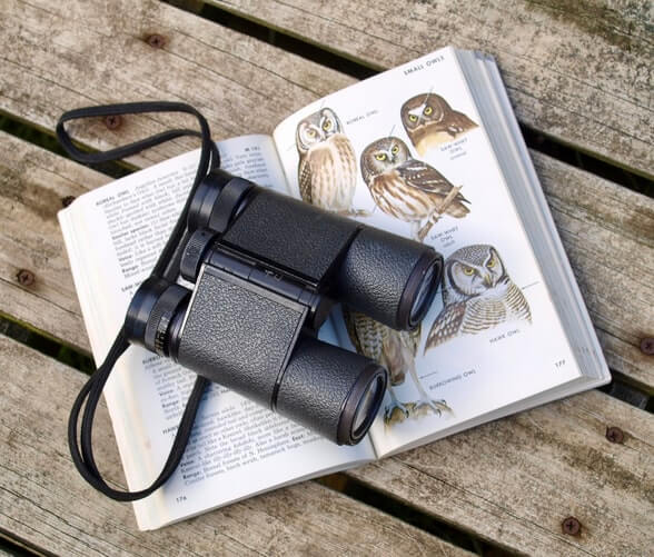 A pair of binoculars on a book about bird watching. Bird watching is a great activity to enjoy while in retirement