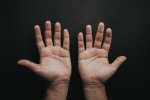 A pair of hands.